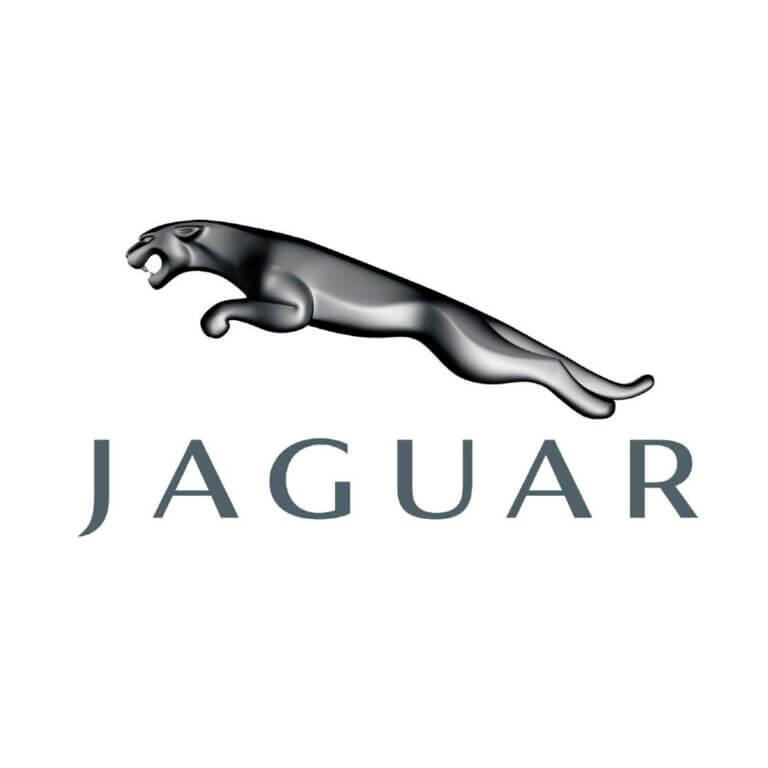 Jaguar (Ягуар)